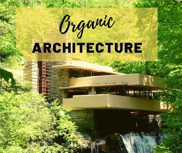 Organic Design, Natural Elements, and Harmony